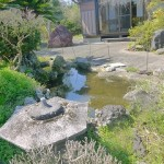 小さい池ですがしっかり出来ています。