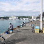 勝浦漁港まで500m