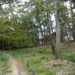 周りにある保有林